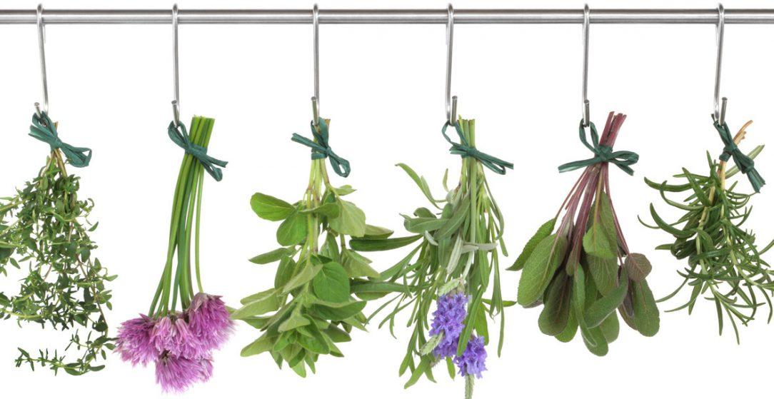 herbal hormones