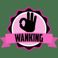 wanking badge 1