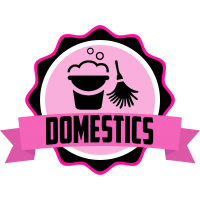 domestics duties